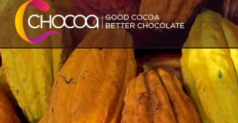 chocoa-festival