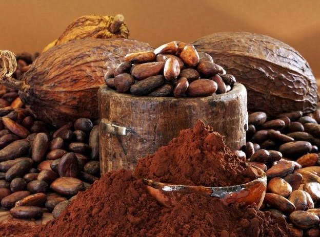 Cocoa-beans-ikmage-from-fotobank_ru_