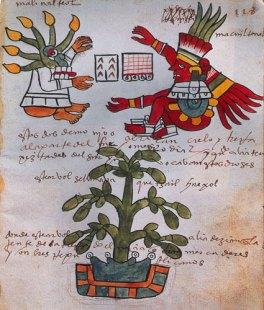 atlas-aztecmanual